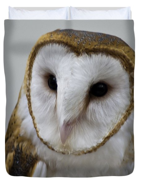 Knowing Barn Owl Duvet Cover by LeeAnn McLaneGoetz McLaneGoetzStudioLLCcom