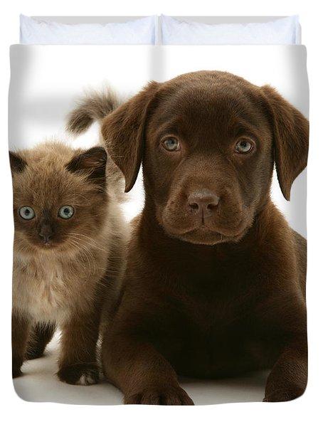 Labrador Pup And Birman-cross Kitten Duvet Cover by Jane Burton