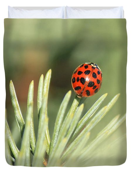 Duvet Cover featuring the photograph Lady Beetle On A Needle by Penny Meyers