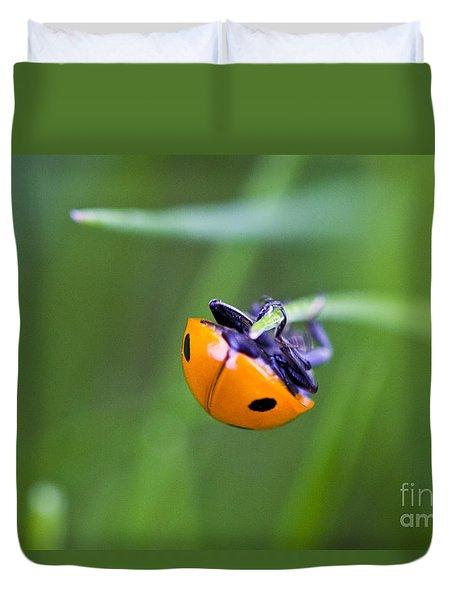 Ladybug Topsy Turvy Duvet Cover by Donna Munro