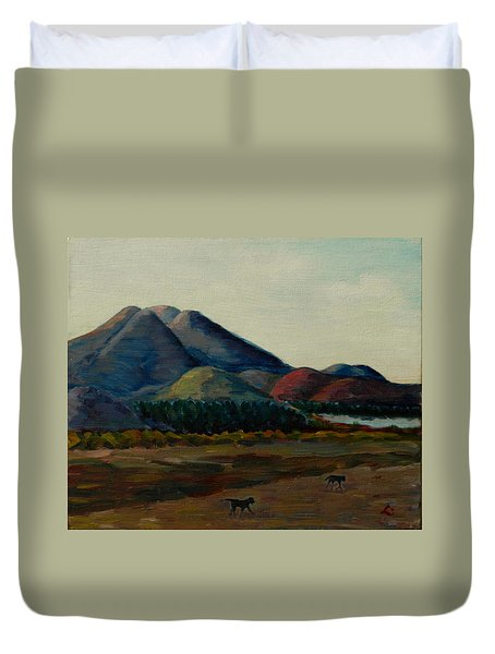 Late Afternoon, Peru Impression Duvet Cover