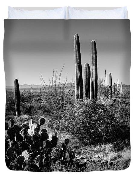 Late Winter Desert Duvet Cover
