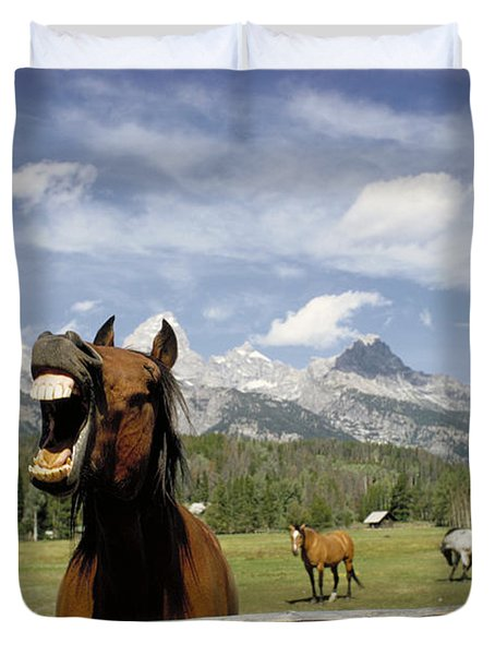 Laughing Horse Duvet Cover by Porterfld and Chickerng and Photo Researchers
