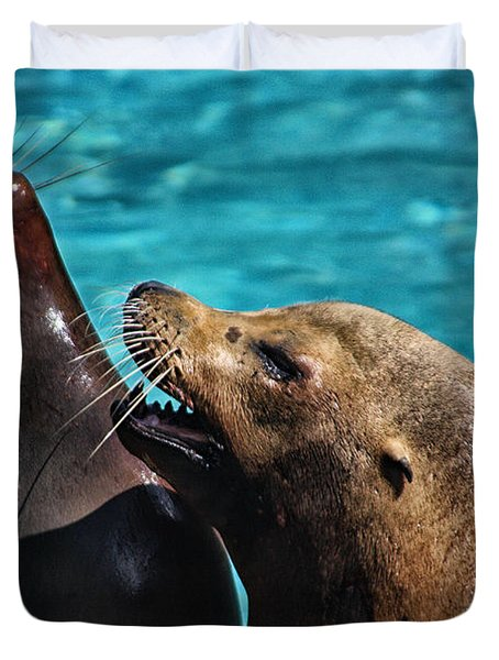 Laughing Seals Duvet Cover by Karol Livote