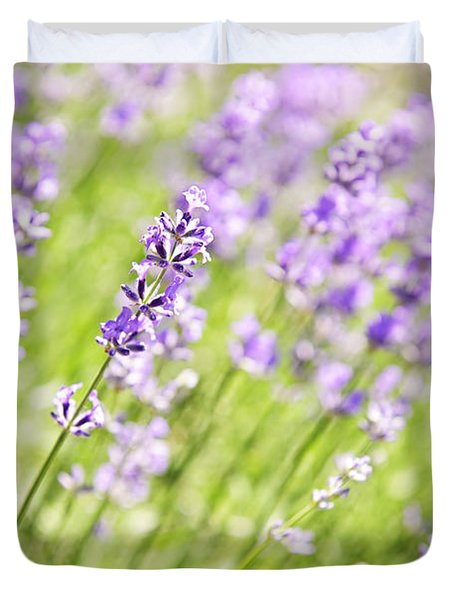 Lavender Blooming In A Garden Duvet Cover by Elena Elisseeva