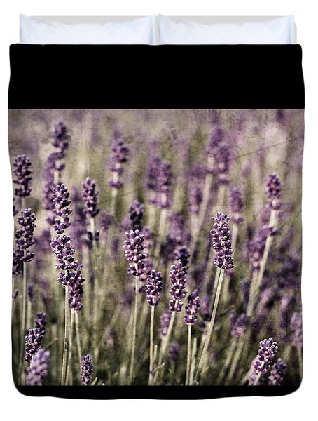 Lavender Field Duvet Cover by Laura Melis
