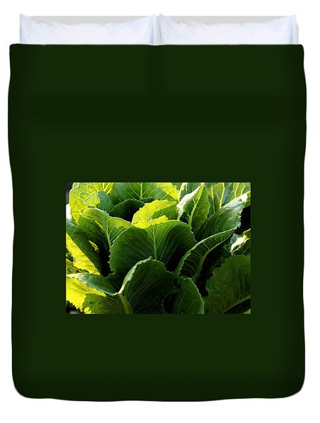 Layers Of Romaine Duvet Cover by Angela Rath