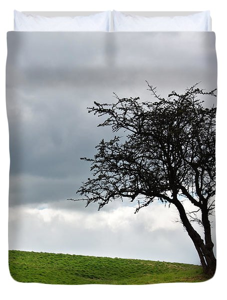 Leafless  Duvet Cover by Semmick Photo
