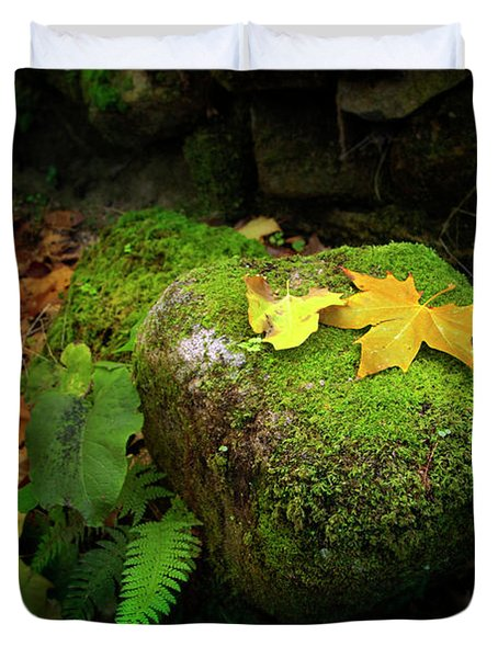 Leafs On Rock Duvet Cover by Carlos Caetano