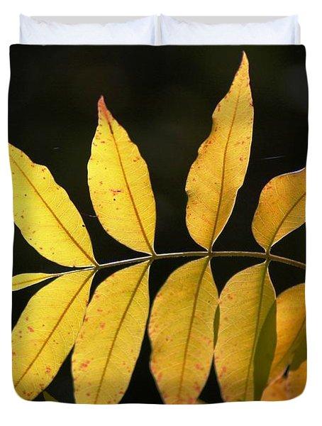 Leaves Of Fall Duvet Cover