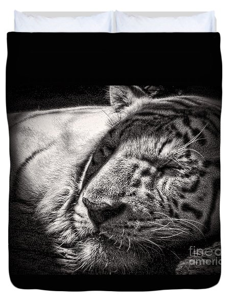 Duvet Cover featuring the photograph Let Sleeping Tiger Lie by Traci Cottingham