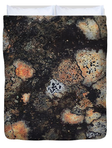 Lichen Abstract Duvet Cover by Susan Capuano