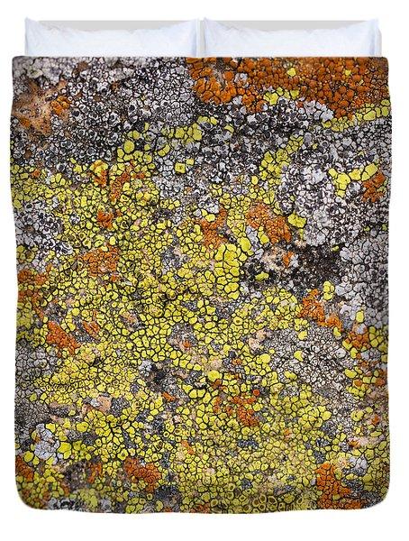 Lichens Duvet Cover by Heidi Smith