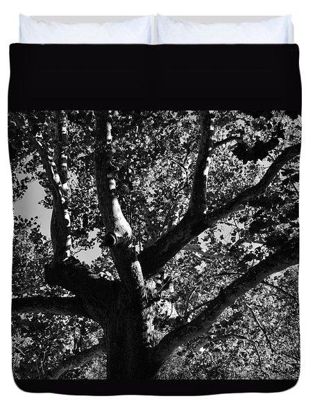Light And Dark Duvet Cover by Brian Hughes