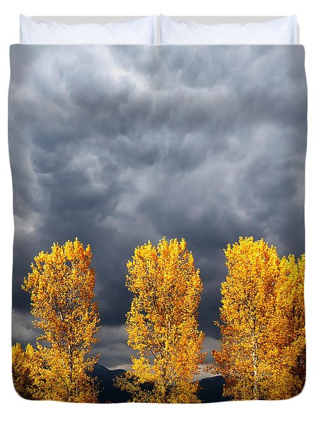 Light And Darkness Duvet Cover by Evgeni Dinev