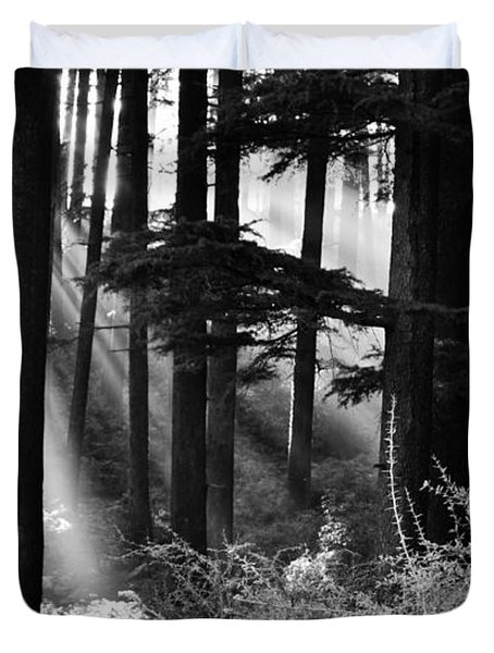 Duvet Cover featuring the photograph Light Through The Trees by Don Schwartz