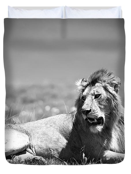 Lion King In Black And White Duvet Cover by Sebastian Musial