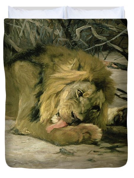 Lion Reclining In A Landscape Duvet Cover by Wilhelm Kuhnert