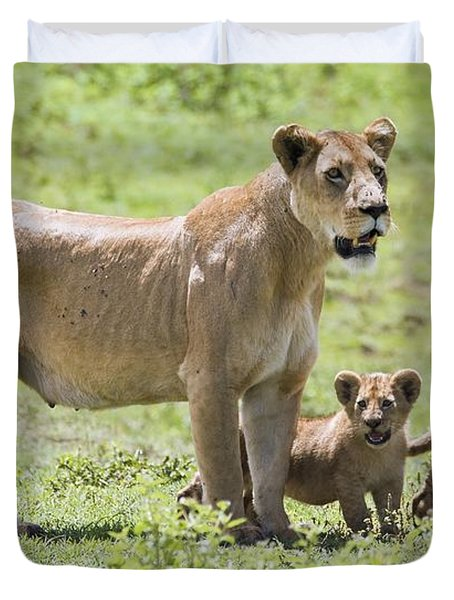 Lioness With Cubs Duvet Cover by Carson Ganci