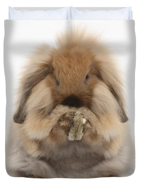Lionhead X Lop Rabbit Grooming Duvet Cover by Mark Taylor