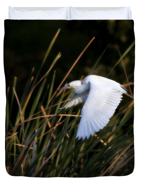 Little Blue Heron Before The Change To Blue Duvet Cover by Steven Sparks