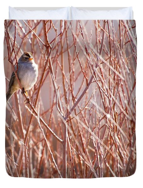 Little Sparrow Duvet Cover by Sabrina L Ryan