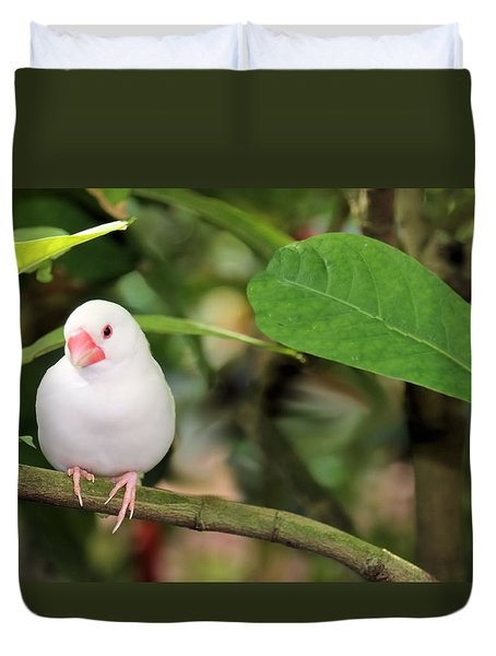 Duvet Cover featuring the photograph Little White Bird by Rosalie Scanlon