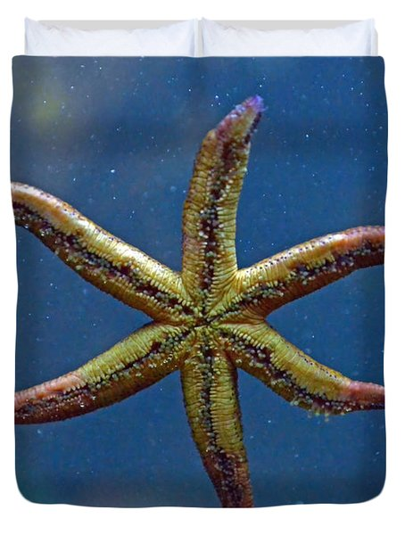 Live Starfish Duvet Cover by Sandi OReilly