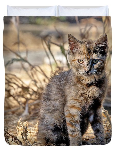 Duvet Cover featuring the photograph Lone Feral Kitten by Chriss Pagani