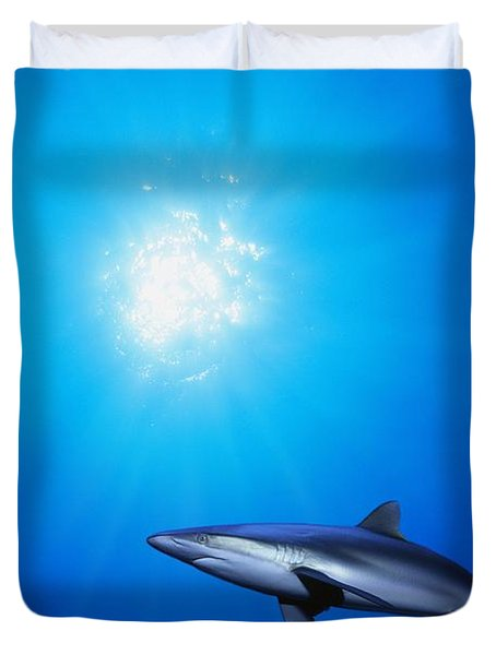 Lone Shark Illuminated By Underwater Duvet Cover by Carson Ganci