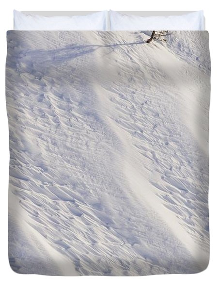 Lone Tree On Mount Hood In Winter Mount Duvet Cover by Craig Tuttle