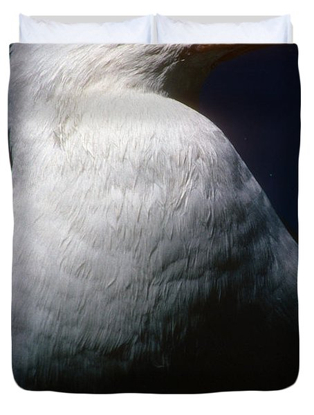 Long Island Seagull Duvet Cover
