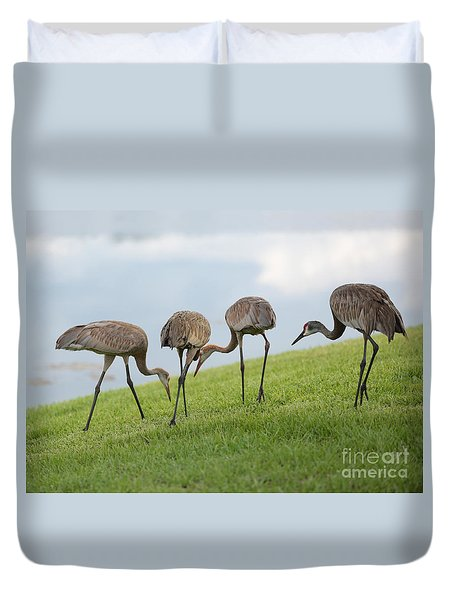 Look What I Found Duvet Cover by Carol Groenen