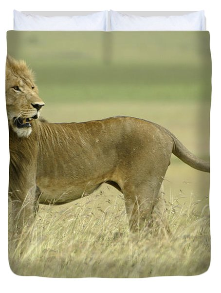 Looking Around Duvet Cover by Michele Burgess