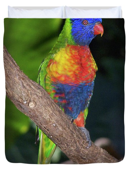 Lorikeet Duvet Cover