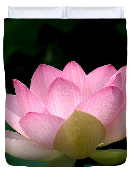 Lotus Beauty--blushing Dl003 Duvet Cover by Gerry Gantt