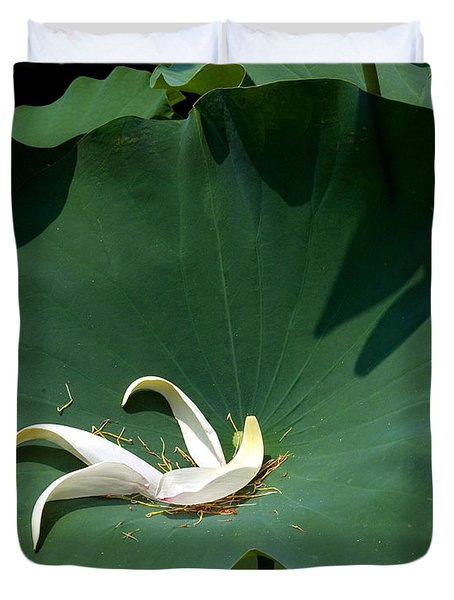 Lotus Leaf--castoff IIi Dl060 Duvet Cover by Gerry Gantt