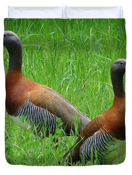 Love Birds Duvet Cover by Ramona Johnston