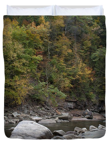 Loyalsock Creek Worlds End State Park Duvet Cover