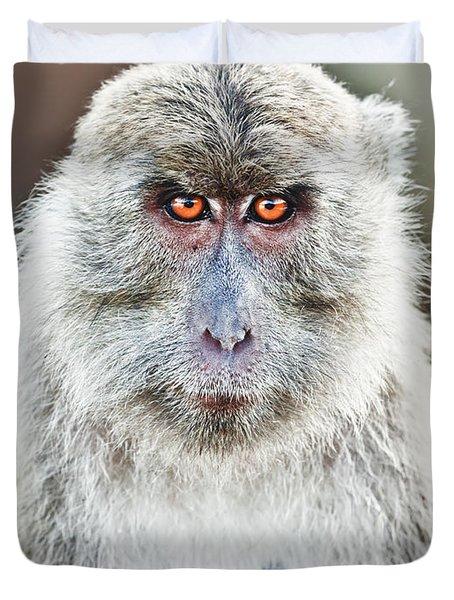 Macaque Portrait Duvet Cover by MotHaiBaPhoto Prints