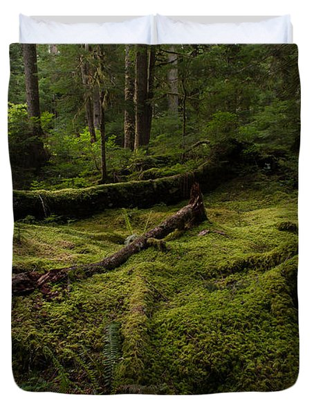 Magical Forest Duvet Cover by Mike Reid