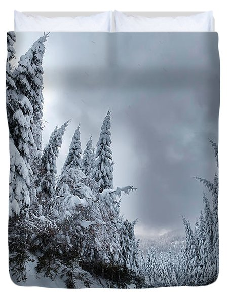 Magnificent Forest Duvet Cover by Evgeni Dinev