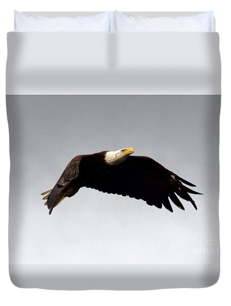 Majestic Flight Duvet Cover by Polly Peacock