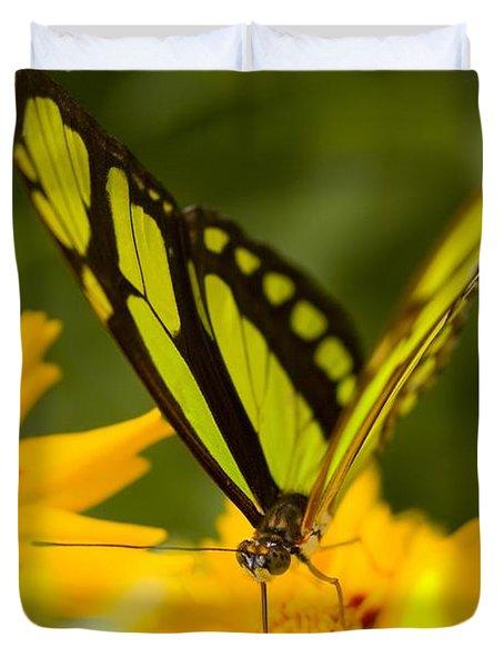 Malachite Butterfly On Flower Duvet Cover by Craig Tuttle
