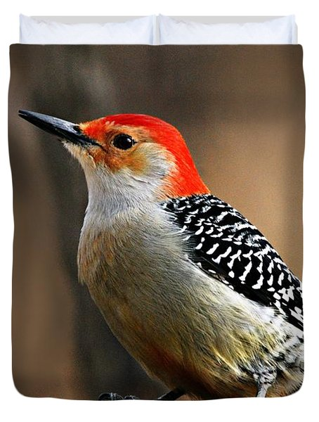 Male Red-bellied Woodpecker 4 Duvet Cover by Larry Ricker