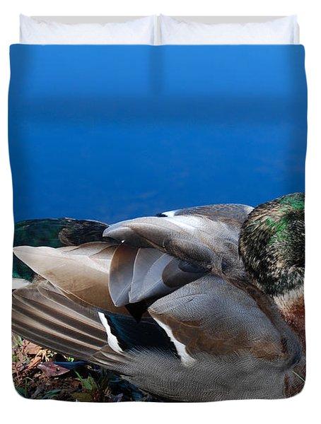 Duvet Cover featuring the photograph Mallard On River Bank by Eva Kaufman