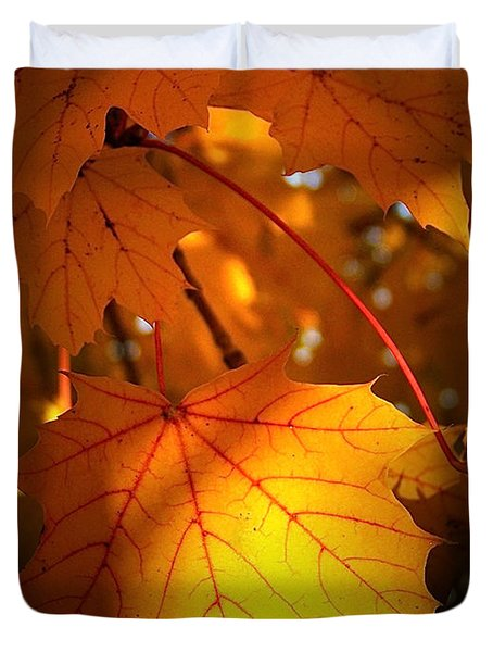 Maple At First Light Duvet Cover