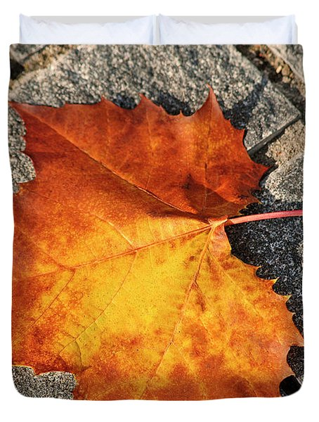 Maple Leaf In Fall Duvet Cover by Carolyn Marshall