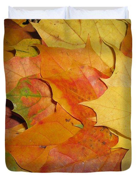 Maple Rainbow Duvet Cover by Ausra Huntington nee Paulauskaite
