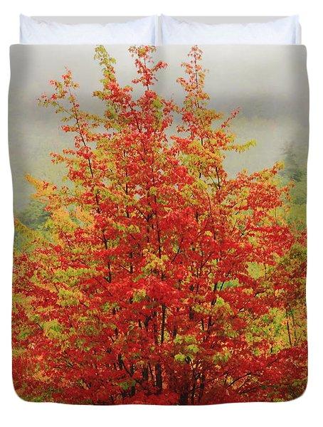 Maples In The Mist Duvet Cover by Roupen  Baker